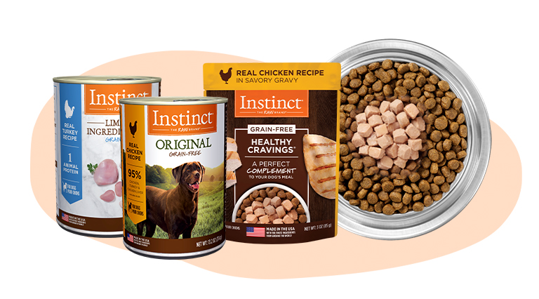 Raw Inspired Wet Dog Food